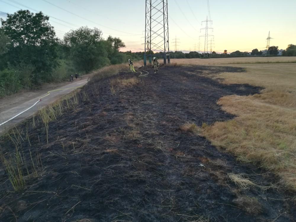 Auf dem Bild sieht man ein Feld nach einem Flächenbrand