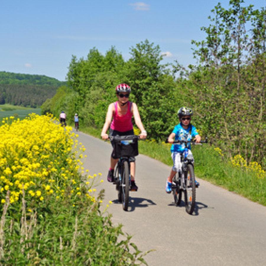 Das Bild zeigt 2 Radfahrer auf einem Radweg, welcher an einer Wiese vorbei führt