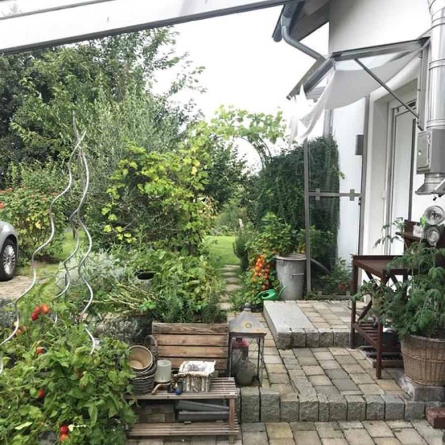 Das Bild zeigt einen begrünten Vorgarten