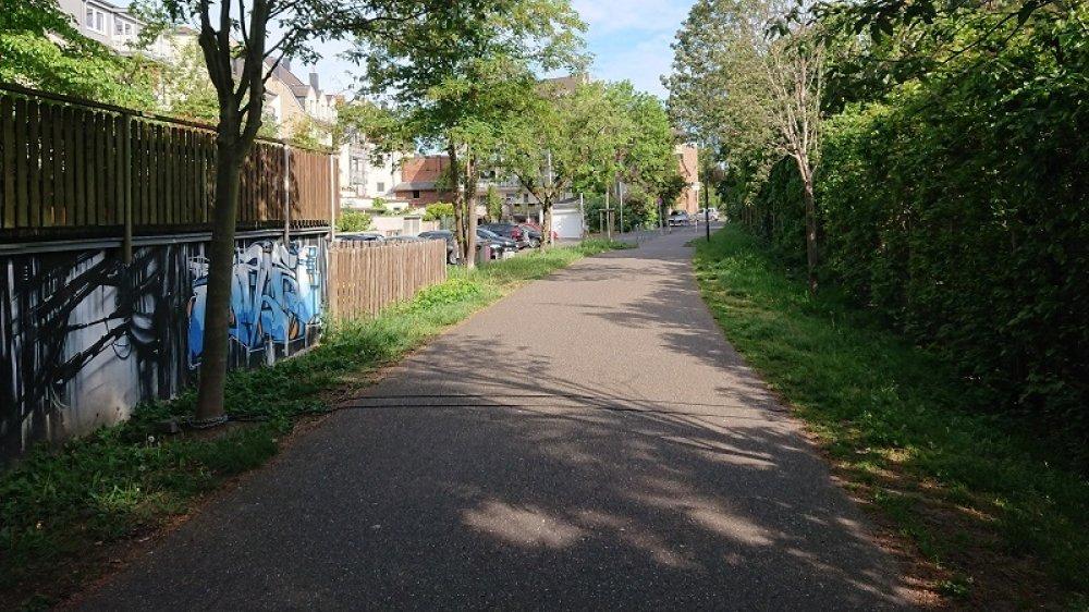 Auf einem Radweg liegen zwei parallel verlaufende Induktionsschlaufen