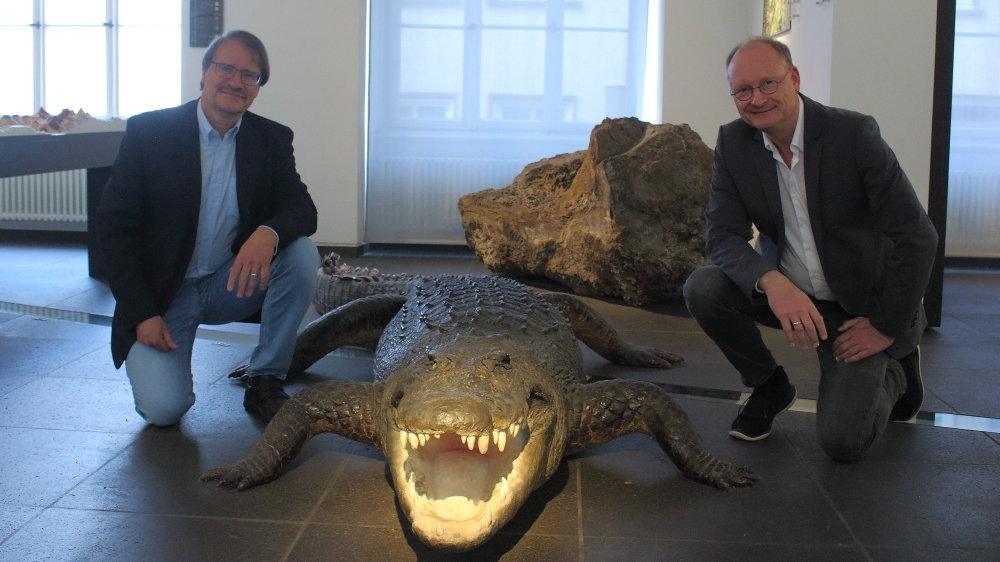 Zwei Männer knien neben einem ausgestopften Krokodil