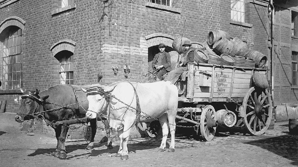 Transportwagen der Brauerei Breuer, Luisenstraße um 1910