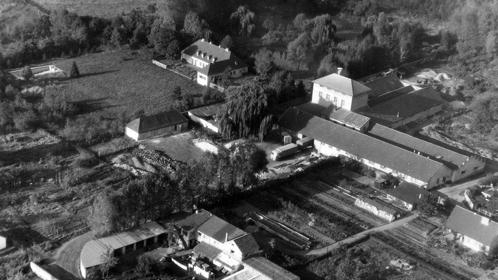 Schwimmbad-Areal zwischen Papagei (vorne) und Zeithstraße im Juli 1965
