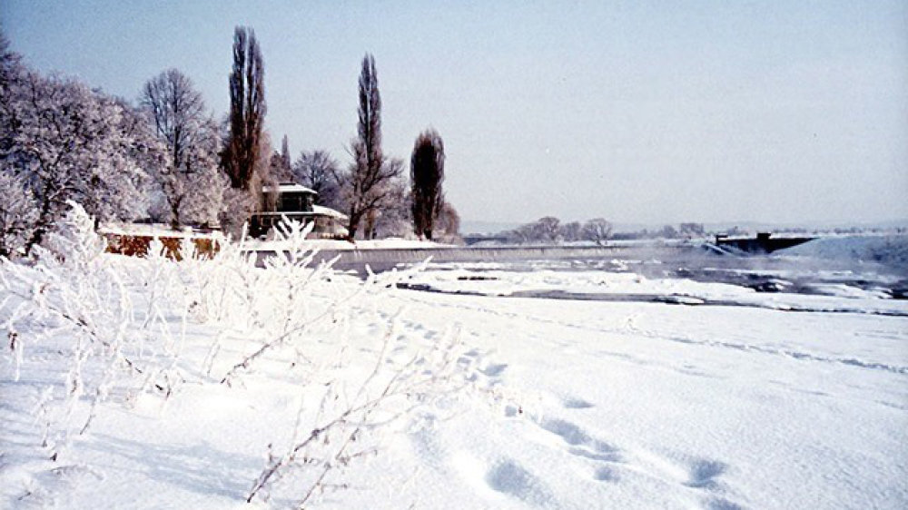 Winter 1985