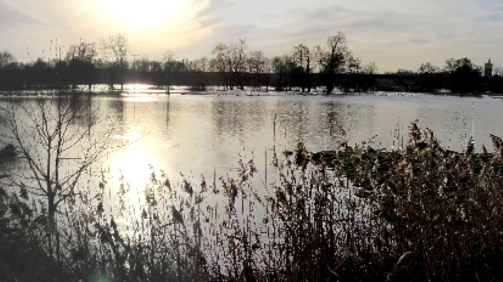 Die Siegauen zwischen Wolsdorf und Kaldauen sind zur Seenlandschaft geworden