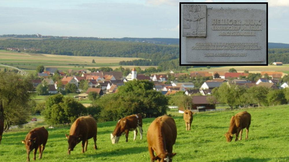 Kühe auf der Weide, im Hintergrund Altstreußlingen, rechts oben der Anno-Gedenkstein