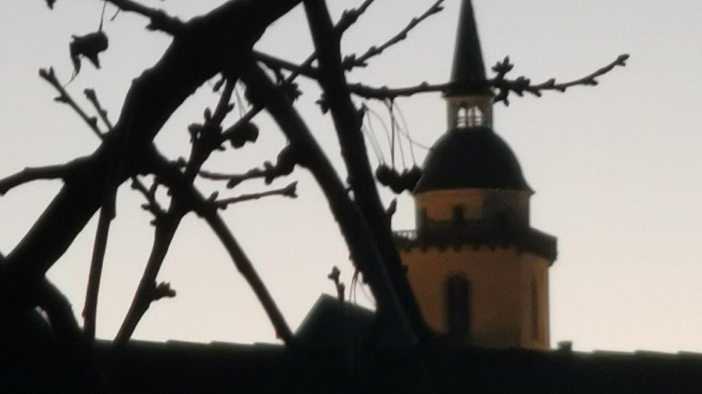 Turm der Kirche S. Michael hinter Kirschbaumzweigen