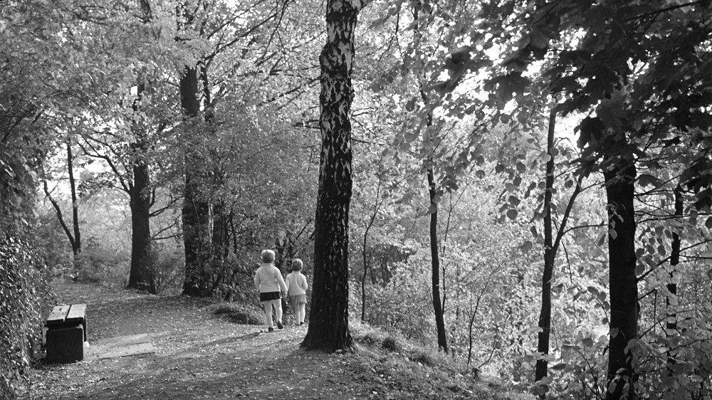 Abteiwege um 1955