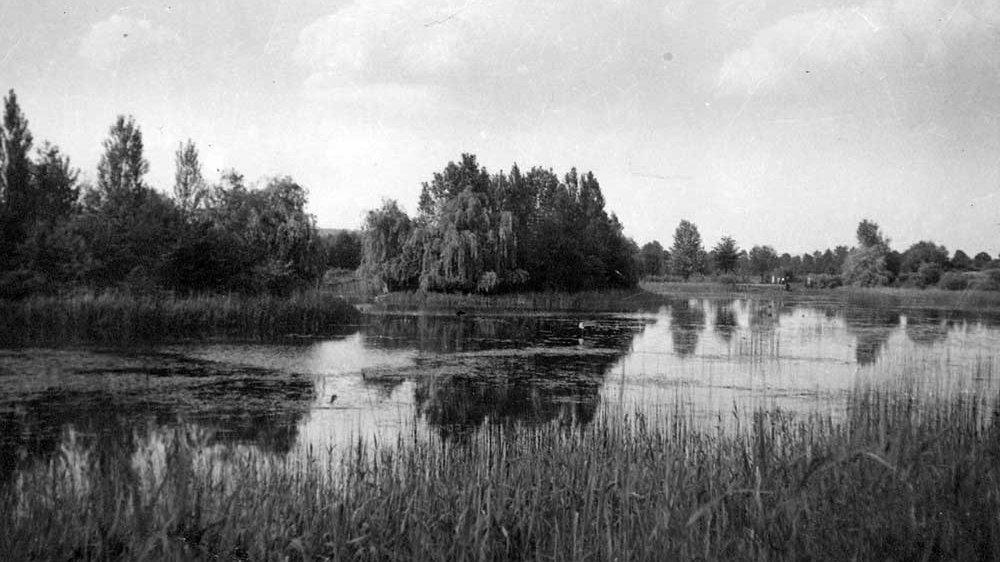 Trerichsweiher 1956