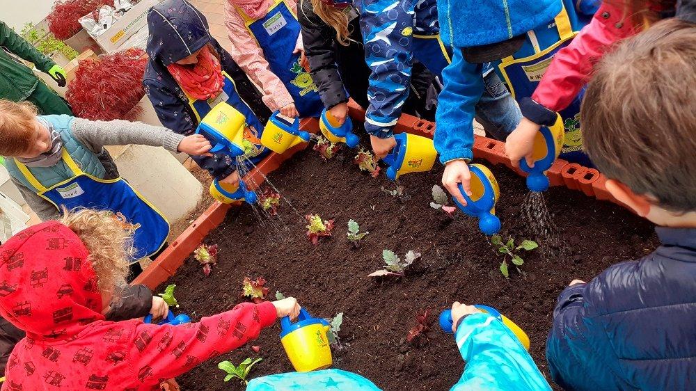 Kinder mit Gießkannen an einem Hochbeet mit jungen Pflanzen