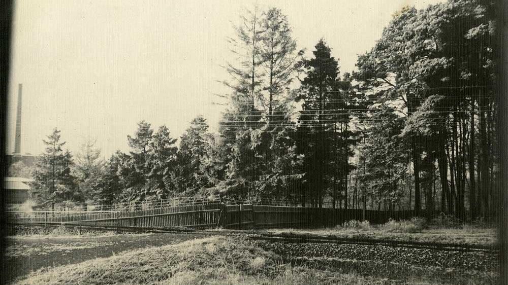 Gleisanschluss des Feuerwerkslaboratoriums am Lohmarer Wald um 1915