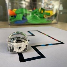 Roboter und Scratch-Challenge