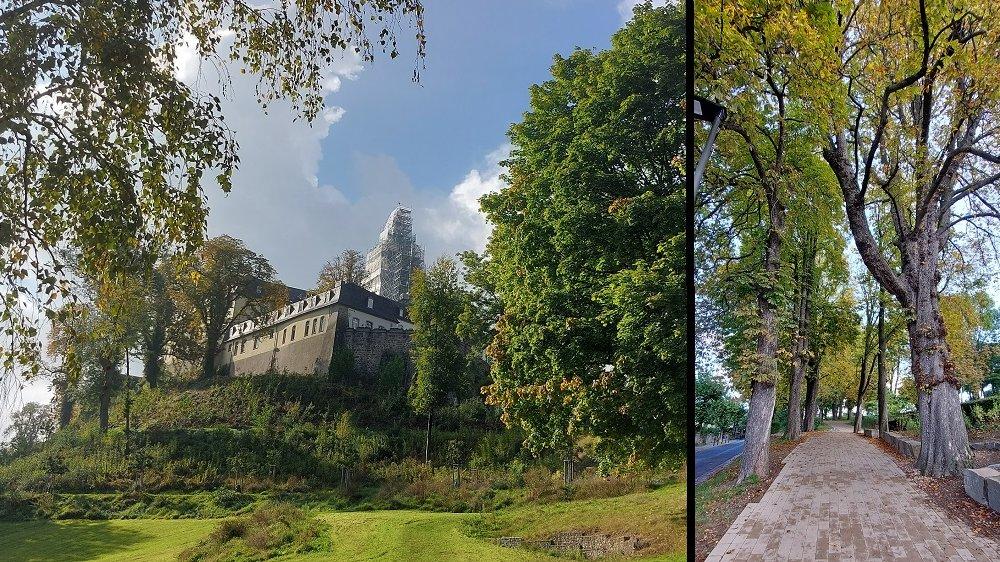 Doppelfoto: links die Abtei, rechts eine herbstlich gefärbte Allee